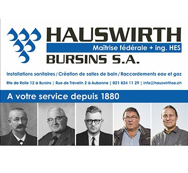 Hauswirth Logo